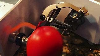 KA-700 Tomato
