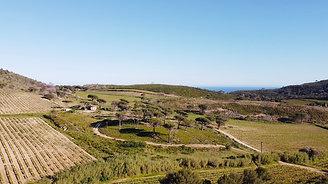 Domaine de la Tourraque