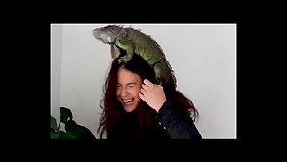 Adore her iguana