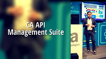 The Integration & API Company