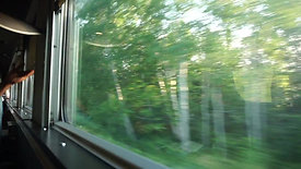 View out of the Train