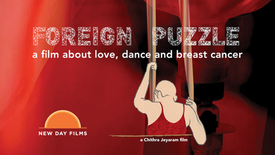 Foreign Puzzle - Feature Documentary (2019)