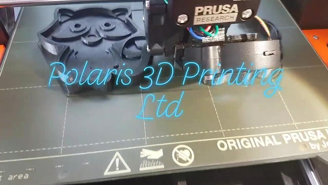 Printing the Racoon mould