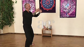 Life Force Qigong - 4 elements standing with Simon Calder