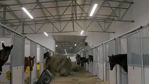 Horse Barn Project