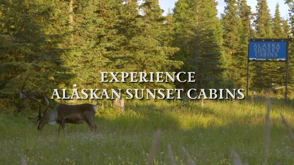 Experience the Kenai at Alaskan Sunset Cabins
