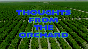 ENOS - Thoughts From The Orchard series