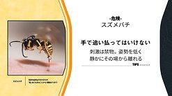 【縦】-危険- スズメバチ