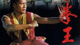 The South Shaolin Master