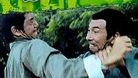 Shaolin Tigers Claw