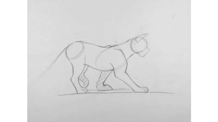 Walk cycle_Quadruped