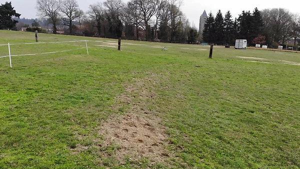 Parcours rouge (herbe du bas)