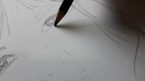 Impostazione di un ritratto