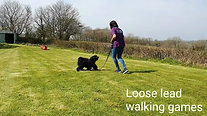 Loose lead walking games