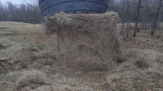 Poly Hay Ring