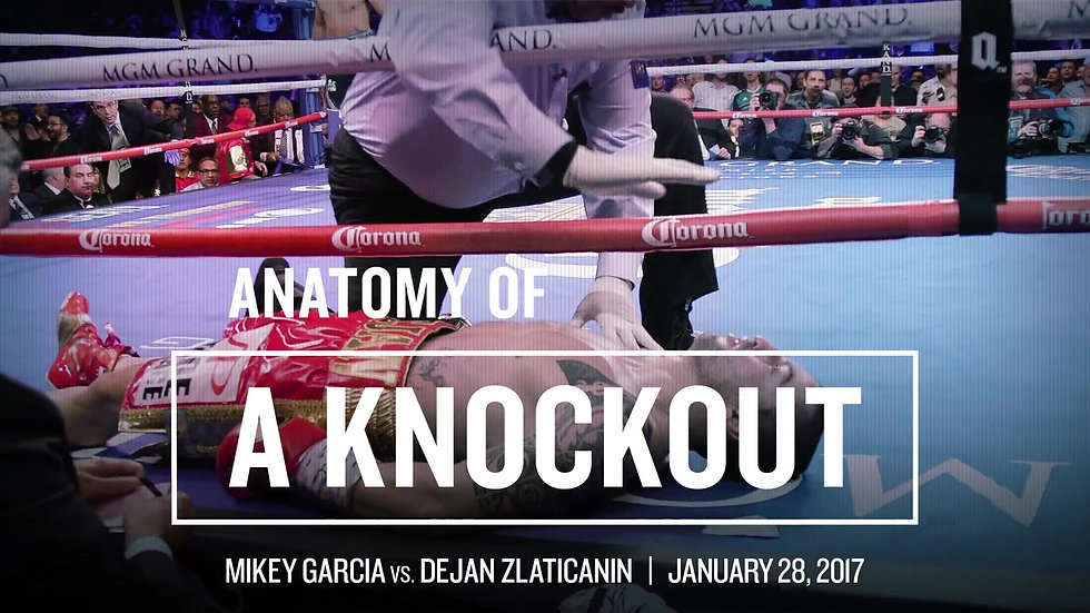 Showtime_ MIKEY GARCIA vs. DEJAN ZLATICANIN