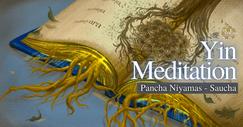 INYE Virtual Yin Meditation Saucha