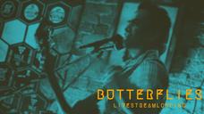 Butterflies - Live Stream Looping