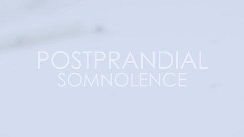 Postprandial Teaser Fliege 2