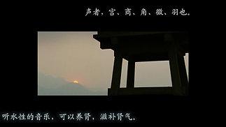 梅花三弄【补肾壮阳】【防治肾病】