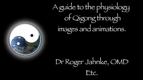 The Physiology of Tai Chi and QiGong