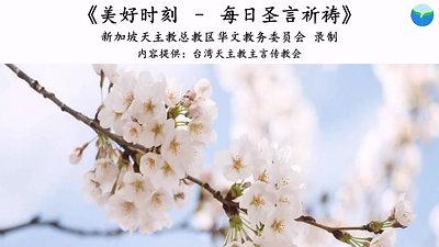 《美好时刻 - 每日圣言祈祷》2021年1月30日 (点击caption来观看字幕)