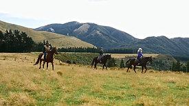Rubicon Valley Horse Treks