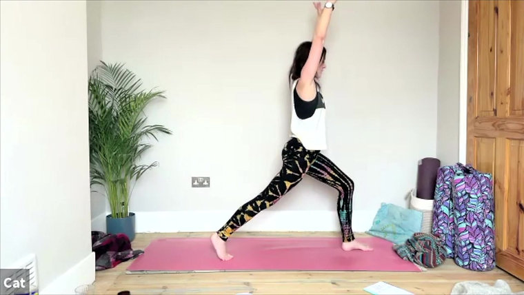 MSL Community Yoga Library - pregnancy
