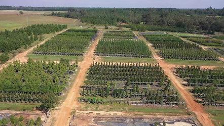 Wrens Farm