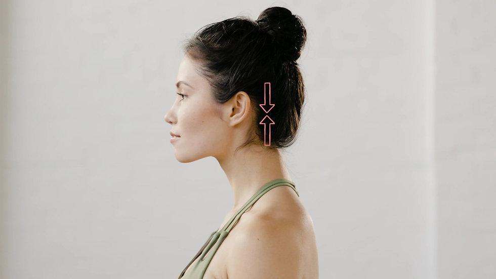 Neck Posture x Headaches