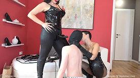 Novice slave training