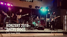 Hardstreet @ Angel Dogs 2019