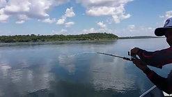 Pesca Produtiva