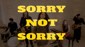 Sorry not Sorry (Demi Lovato)