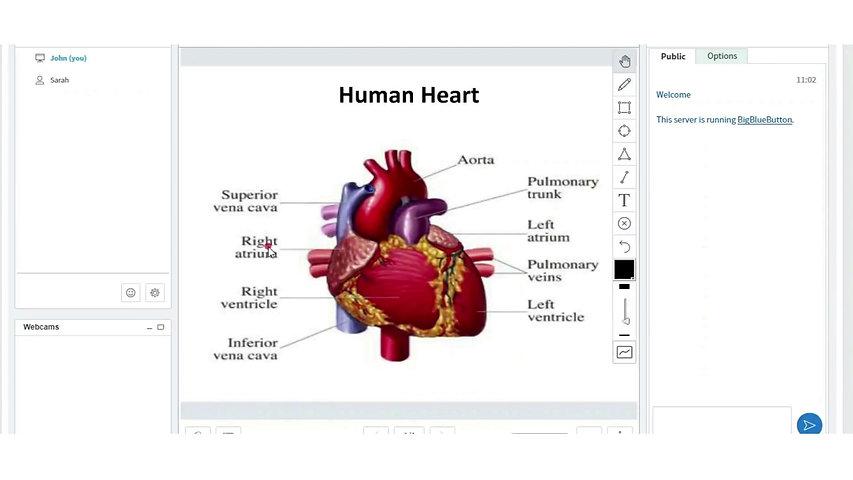 Interactive Online Classroom
