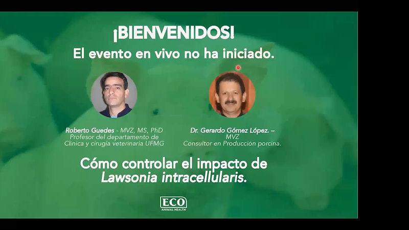 1) WEBINAR ILEITIS Conferencia Dr. Guedes