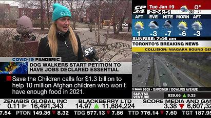 Toronto CP24 Dog Walking Morning Segment