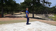 1 b Intro Qigong The Tai Chi Stance