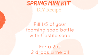 Spring Foaming Hand Soap