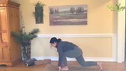 Twisting Series for Digestion