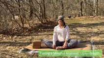 Taking a Mindful Moment