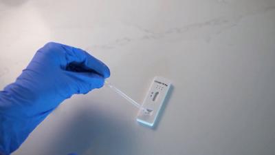 Antigen tests for Global teams
