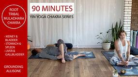 Yin Yoga Chakra Series - Root Chakra