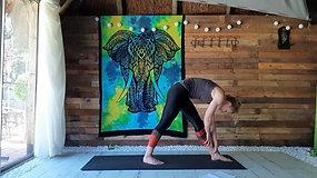 Hatha Yoga with Kirstie - Dissolve Stress Flow