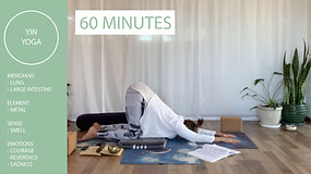 Yin Yoga with Chloe - Lung & Large Intestine Meridian Lines
