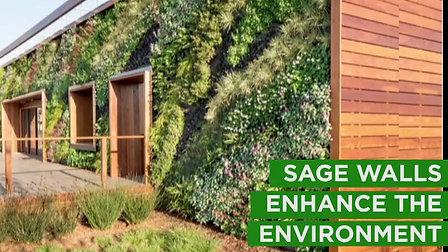 B2B - Sage Vertical Gardens