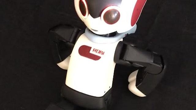 Robi The Robot - Initial Testing