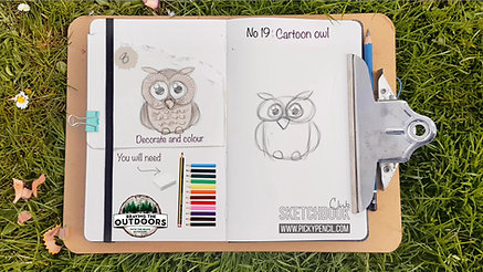No 19 cartoon owl