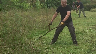 Scything wildflower meadow at an office site.