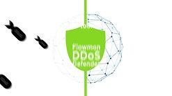 Flowmon-DDoS Defender